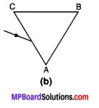 MP Board Class 10th Science Solutions Chapter 11 मानव नेत्र एवं रंगबिरंगा संसार 21