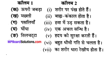 MP Board Class 6th Science Solutions Chapter 8 शरीर में गति 1