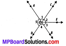 MP Board Class 7th Maths Solutions Chapter 5 Lines and Angles Ex 5.1 4