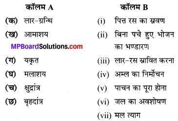 MP Board Class 7th Science Solutions Chapter 2 प्राणियों में पोषण 3