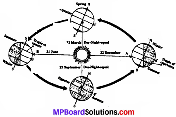 MP Board Class 7th Social Science Solutions Chapter 7 Movements of the Earth-3