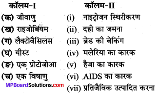MP Board Class 8th Science Solutions Chapter 2 सूक्ष्मजीव मित्र एवं शत्रु 1