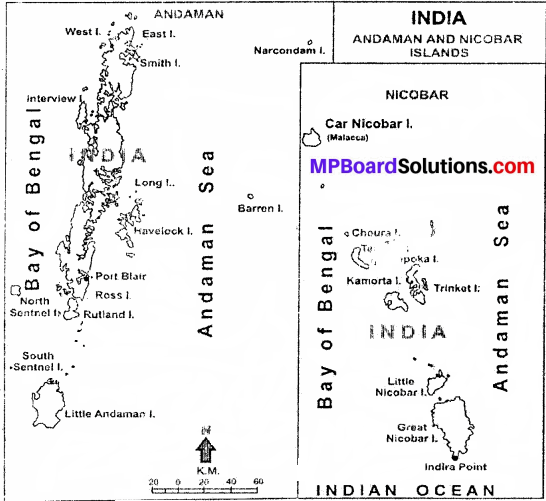MP Board Class 9th Social Science Solutions Chapter 3 India Location and Physical Divisions - 2