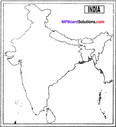 MP Board Class 9th Social Science Solutions Chapter 6 India Natural Vegetation and Wild Life - 2