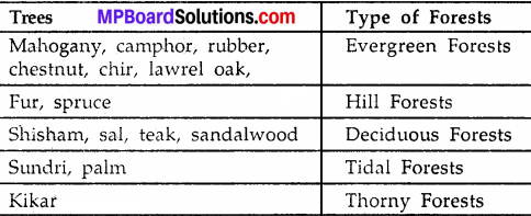 MP Board Class 9th Social Science Solutions Chapter 6 India Natural Vegetation and Wild Life - 3