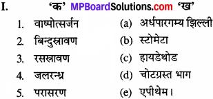 MP Board Class 11th Biology Solutions Chapter 11 पौधों में परिवहन - 1