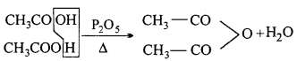 MP Board Class 12th Chemistry Solutions Chapter 12 Aldehydes, Ketones and Carboxylic Acids 121