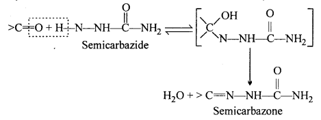 MP Board Class 12th Chemistry Solutions Chapter 12 Aldehydes, Ketones and Carboxylic Acids 15