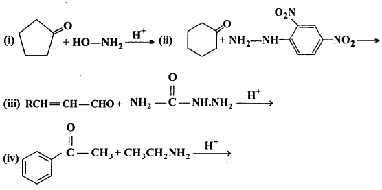 MP Board Class 12th Chemistry Solutions Chapter 12 Aldehydes, Ketones and Carboxylic Acids 5