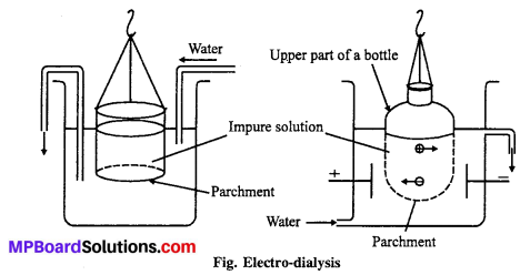 MP Board Class 12th Chemistry Solutions Chapter 5 Surface Chemistry 21
