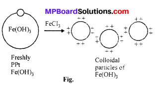 MP Board Class 12th Chemistry Solutions Chapter 5 Surface Chemistry 24
