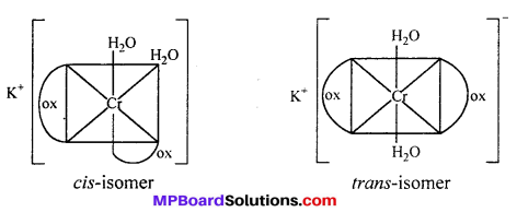 MP Board Class 12th Chemistry Solutions Chapter 9 Coordination Compounds 1
