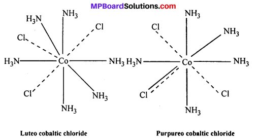 MP Board Class 12th Chemistry Solutions Chapter 9 Coordination Compounds 10