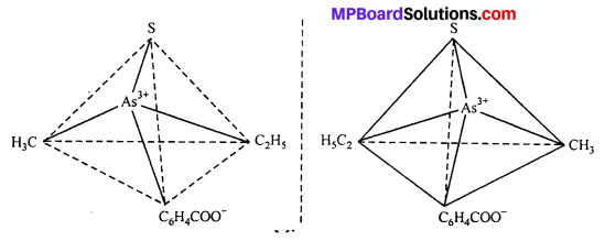 MP Board Class 12th Chemistry Solutions Chapter 9 Coordination Compounds 14