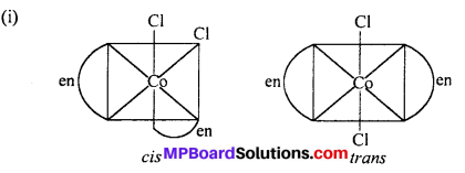 MP Board Class 12th Chemistry Solutions Chapter 9 Coordination Compounds 19