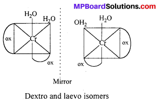 MP Board Class 12th Chemistry Solutions Chapter 9 Coordination Compounds 2