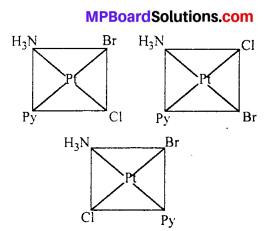 MP Board Class 12th Chemistry Solutions Chapter 9 Coordination Compounds 23
