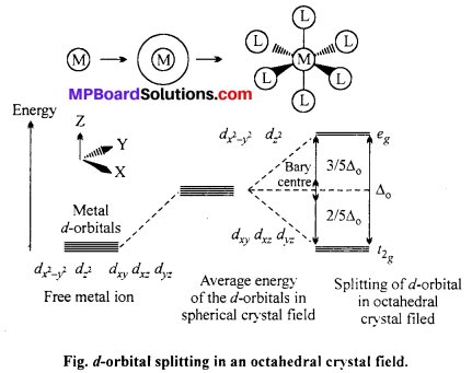 MP Board Class 12th Chemistry Solutions Chapter 9 Coordination Compounds 24