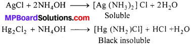 MP Board Class 12th Chemistry Solutions Chapter 9 Coordination Compounds 34