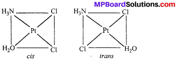 MP Board Class 12th Chemistry Solutions Chapter 9 Coordination Compounds 4