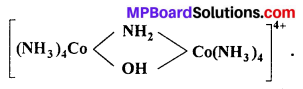 MP Board Class 12th Chemistry Solutions Chapter 9 Coordination Compounds 58