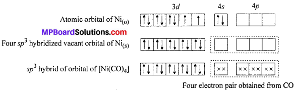 MP Board Class 12th Chemistry Solutions Chapter 9 Coordination Compounds 68