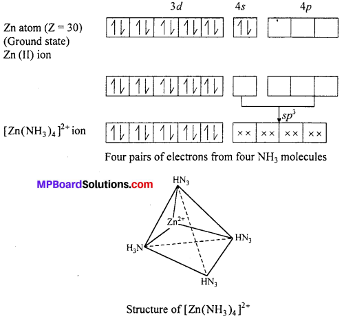 MP Board Class 12th Chemistry Solutions Chapter 9 Coordination Compounds 69