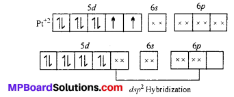 MP Board Class 12th Chemistry Solutions Chapter 9 Coordination Compounds 7