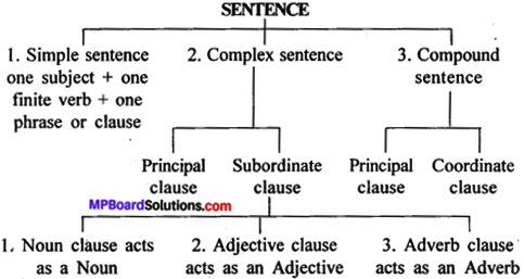 MP Board Class 12th General English Grammar Clauses 1