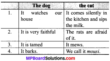 I Love Little Pussy Meaning In Hindi MP Board