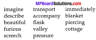 MP Board Class 8th Special English Revision Exercises 2 1