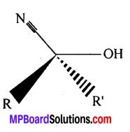 MP Board Class 12th Chemistry Solutions Chapter 12 ऐल्डिहाइड्स, कीटोन्स तथा कार्बोक्सिलिक अम्ल - 135