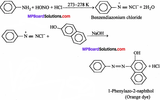 MP Board Class 12th Chemistry Solutions Chapter 13 Amines - 11