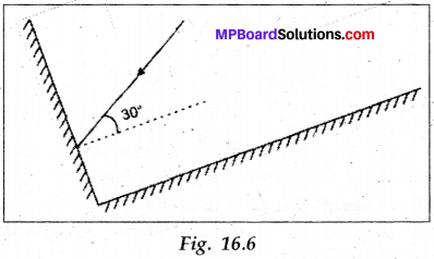 Mp Board Class 8 Social Science Chapter 16