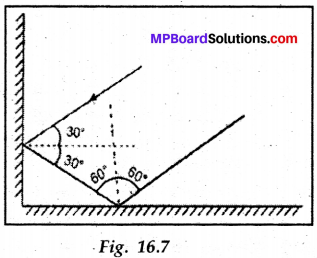 Class 8th Science Chapter 16 Solution MP Board