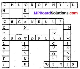 Mp Board Class 8 Science Solution