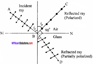 MP Board 12th Physics Important Questions Chapter 10 Wave Optics 14