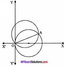 MP Board Class 11th Maths Important Questions Chapter 11 Conic Sections 7