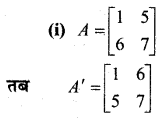 MP Board Class 12th Maths Book Solutions Chapter 3 आव्यूह Ex 3.3 17
