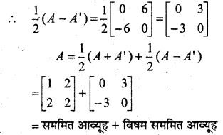 MP Board Class 12th Maths Book Solutions Chapter 3 आव्यूह Ex 3.3 28
