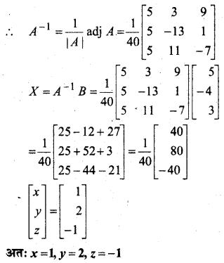MP Board Class 12th Maths Book Solutions Chapter 4 सारणिक Ex 4.6 25