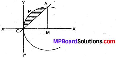MP Board Class 12th Maths Book Solutions Chapter 8 समाकलनों के अनुप्रयोग Ex 8.2 13