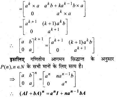 MP Board Class 12th Maths Solutions Chapter 3 आव्यूह विविध प्रश्नावली 3