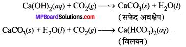 MP Board Class 10th Science Solutions Chapter 1 रासायनिक अभिक्रियाएँ एवं समीकरण 17
