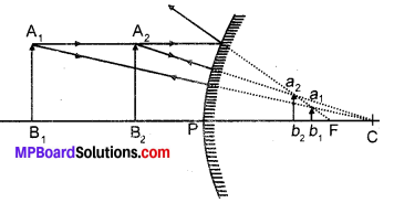 MP Board Class 10th Science Solutions Chapter 10 Light Reflection and Refraction 24