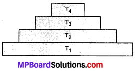 MP Board Class 10th Science Solutions Chapter 15 हमारा पर्यावरण 2