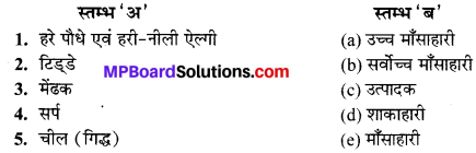 MP Board Class 10th Science Solutions Chapter 15 हमारा पर्यावरण 3