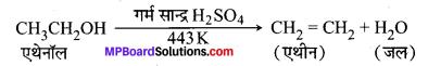 MP Board Class 10th Science Solutions Chapter 4 कार्बन एवं इसके यौगिक 34