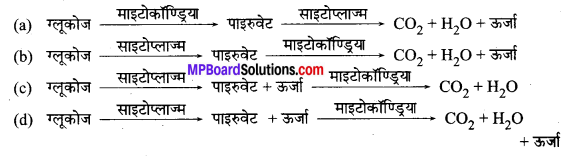 MP Board Class 10th Science Solutions Chapter 6 जैव प्रक्रम 5