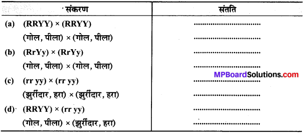 MP Board Class 10th Science Solutions Chapter 9 अनुवांशिकता एवं जैव विकास 10